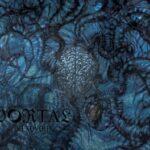 Portal — Vexovoid (2013)