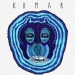 Kumar — Kumar (2014)