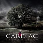 Cardiac — Deformation (2014)
