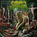 Cerebral Engorgement — Gastrointestinal Bleeding (2013)