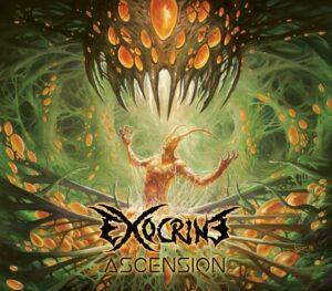 Exocrine — Ascension (2017)