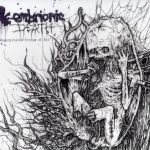 Embrionic Death — Regurgitated Stream Of Rot (2011)