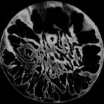 Ovarian Despoilment — Demo (2013)