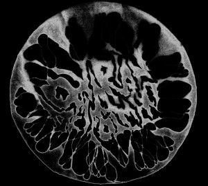 Ovarian Despoilment - Demo (2013)
