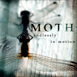 Moth - Endlessly In Motion (2013)