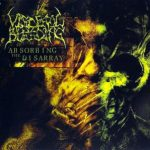 Visceral Bleeding — Absorbing The Disarray (2007)
