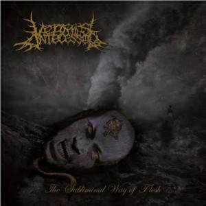Vermis Antecessor - The Subliminal Way Of Flesh (2011)