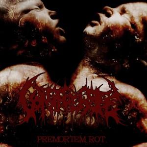 Vomit The Hate - Premortem Rot (2010)