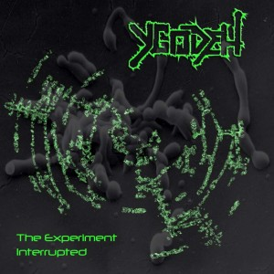 Ydogeh - The Experiment Interrupted (2013)