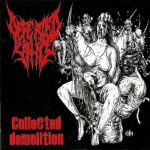 Defeated Sanity — Collected Demolition (2010)