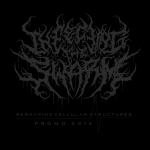 Infecting The Swarm — Reshaping Cellular Structures (2013)