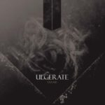 Ulcerate — Vermis (2013)