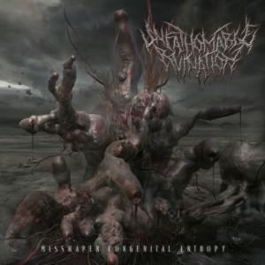 Unfathomable Ruination - Misshapen Congenital Entropy (2012)