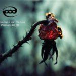Essence Of Datum — Promo (2015)