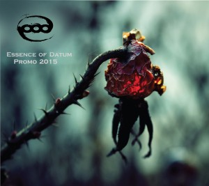 Essence Of Datum - Promo (2015)