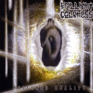 Brilliant Coldness — Poisoned Reality (2006)