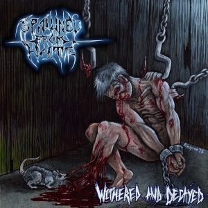 Spawned From Hate — Withered And Decayed (2012)