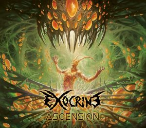 Exocrine — Ascension (2017)