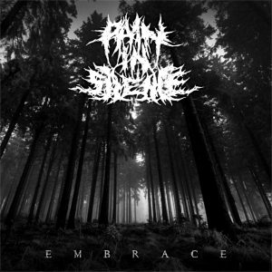 Pain In Silence — Embrace (2018)