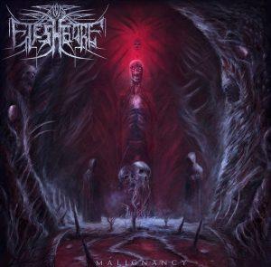 Fleshbore — Malignancy (2018)