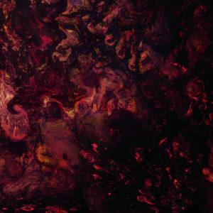 Plague Rider — Rhizome (2018)
