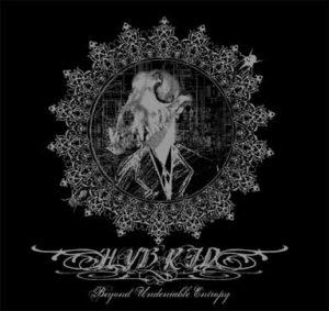 Hybrid — Beyond Undeniable Entropy (2006)