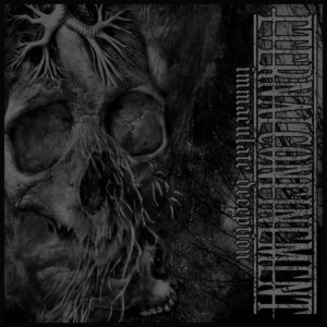 Eternal Confinement — Immaculate Deception (2019)